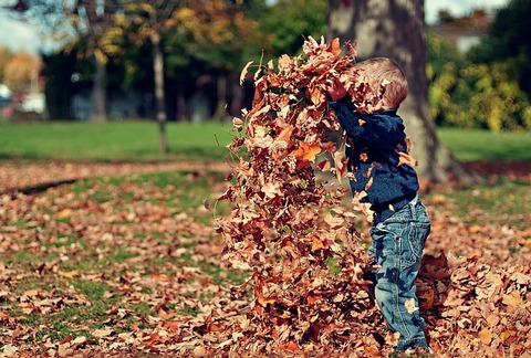 A boy throwing yellow leaves in his backyard to illustrate that cleaning is one of home improvement projects to do with kids.