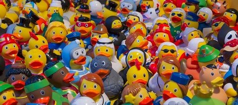 Dozens of rubber duck toys